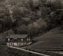 bond winery 1