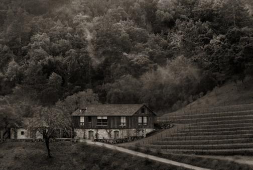 bond winery 11