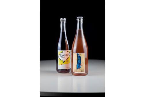 vinhos-tubarao