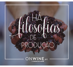 Há filosofias de produção - Vinhos Tradicionais X Modernos
