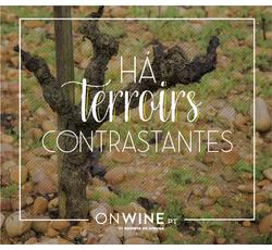 Há terroirs contrastantes -  Vinhos Atlânticos x De Montanha